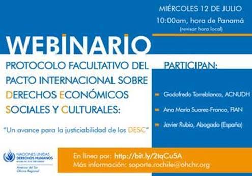 Imagen seminario virtual NNUU